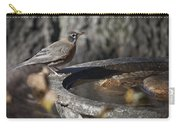 Mrs Robin Carry-all Pouch