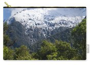 Mt. Aspiring National Park Peaks Carry-all Pouch