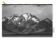 Mt. Cook Carry-all Pouch