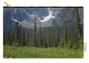 1m3613-mt. Patterson And The Snowbird Glacier Carry-all Pouch