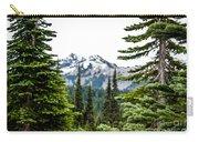 Mt. Rainier Framed Carry-all Pouch