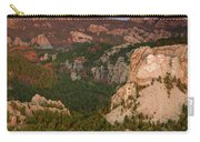 Mt. Rushmore With Beetlekill Ponderosa Carry-all Pouch