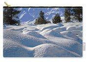 2m6403-mt. Tom From Sherwin Grade V Carry-all Pouch