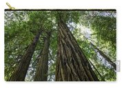 Muir Woods I Carry-all Pouch