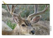 Mule Deer Buck In Velvet Carry-all Pouch