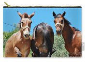 Mules On Alonissos Island Carry-all Pouch