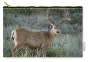 Muley Buck In Velvet Carry-all Pouch