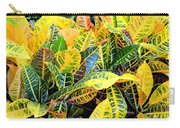Multi-colored Croton Carry-all Pouch
