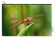 Multicolored Dragonfly Carry-all Pouch
