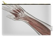 Muscle Anatomy Of Human Arm And Hand Carry-all Pouch