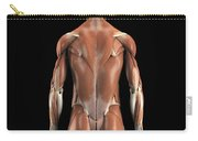 Muscles Of The Upper Body Rear Carry-all Pouch
