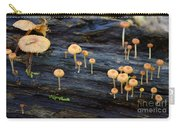 Mushrooms Amazon Jungle Brazil 4 Carry-all Pouch