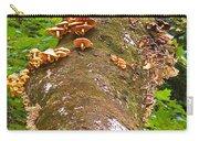 Mushroom's Kingdom Carry-all Pouch