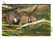 Muskrat Trio Carry-all Pouch
