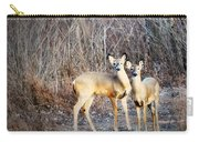 Mystic Duo Carry-all Pouch