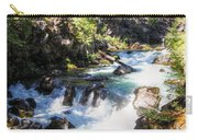 Natural Bridges Carry-all Pouch