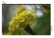 Natural Ruffles Carry-all Pouch