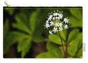 Nature Celebrates Spring With A Burst Of Botanical Fireworks Carry-all Pouch