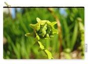 Nature Green Fern Frond Unfolding Art Prints Ferns Carry-all Pouch