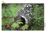 Nature Recycled Carry-all Pouch