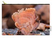 Nature's Abstract 4 Carry-all Pouch