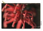 Natures Fireworks Carry-all Pouch