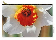 Nature's Sun Carry-all Pouch