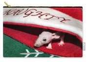 Naughty List Carry-all Pouch