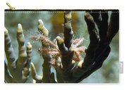 Neck Crab - Macro Undersea Reef Life Carry-all Pouch