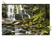 Nelson Falls Tasmania Carry-all Pouch