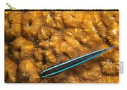 Neon Goby Carry-all Pouch