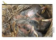 Nest Of American Robins Carry-all Pouch