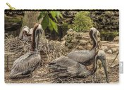 Nesting Brown Pelicans Carry-all Pouch