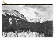 Never Summer Wilderness Area Panorama Bw Carry-all Pouch