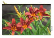New Daylilies Carry-all Pouch