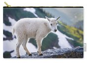 New Life In The High Country Carry-all Pouch