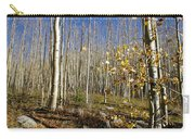 New Mexico Series -  Bare Autumn Carry-all Pouch
