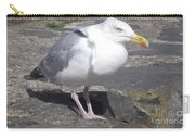 New Quay Gull 1 Carry-all Pouch