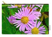 New York Asters In Flower's Cove-newfoundland Carry-all Pouch