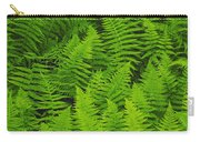 New York Ferns Carry-all Pouch