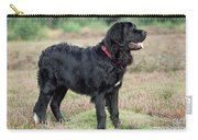 Newfoundland Dog, Standing In Field Carry-all Pouch