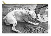 Newsworthy Dog In French Quarter Black And White Carry-all Pouch