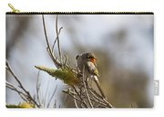 Noisy Miner V3 Carry-all Pouch