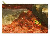 Nome Land Carry-all Pouch