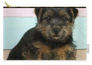 Norfolk Terrier Puppy Dog, Sitting Carry-all Pouch