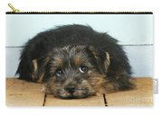 Norfolk Terrier Puppy Carry-all Pouch