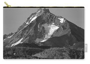 105615-north Sister Or,bw Carry-all Pouch