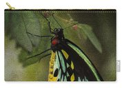 Northern Butterfly Carry-all Pouch
