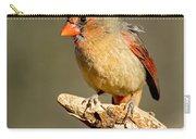 Northern Cardinal Cardinalis Cardinalis Carry-all Pouch