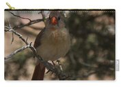 Northern Cardinal Carry-all Pouch